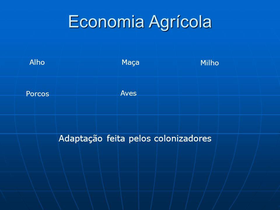 Economia Agrícola AlhoMaça Milho Porcos Aves Adaptação feita pelos colonizadores