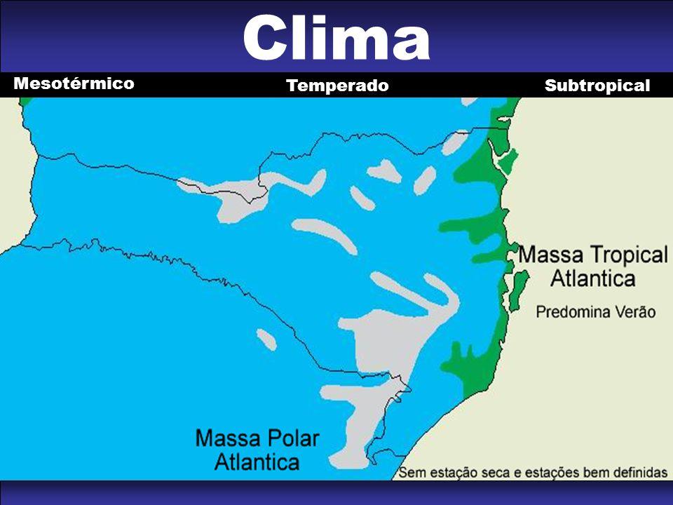 Clima Mesotérmico SubtropicalTemperado
