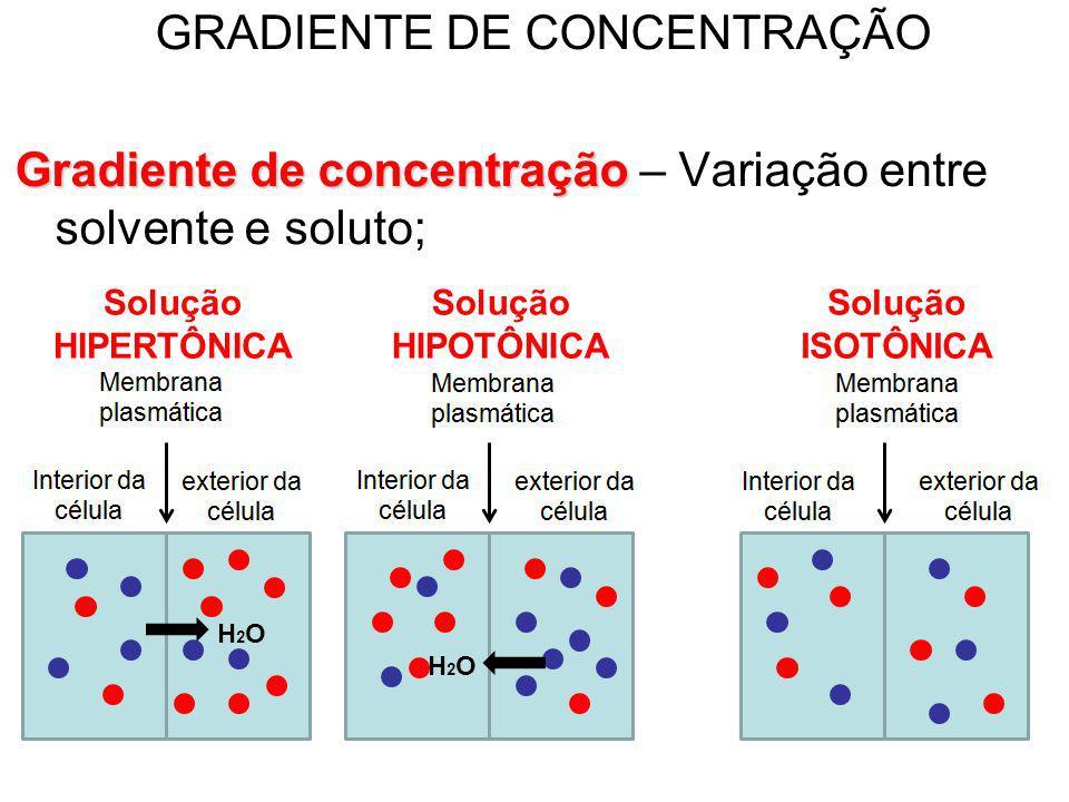 GRADIENTE DE CONCENTRAÇÃO Gradiente de concentração Gradiente de concentração – Variação entre solvente e soluto; H2OH2O H2OH2O Solução HIPERTÔNICA So