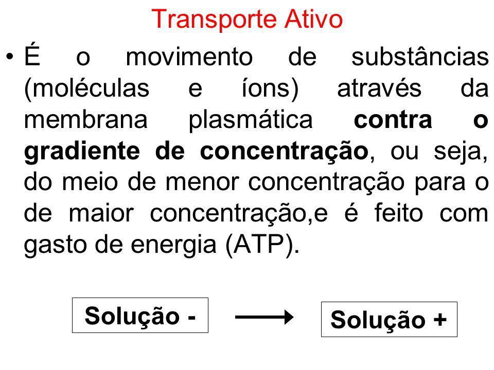 Transporte Ativo É o movimento de substâncias (moléculas e íons) através da membrana plasmática contra o gradiente de concentração, ou seja, do meio d