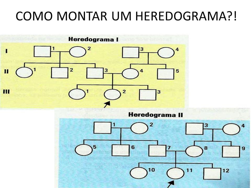 COMO MONTAR UM HEREDOGRAMA?!