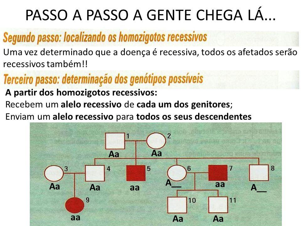 PASSO A PASSO A GENTE CHEGA LÁ...
