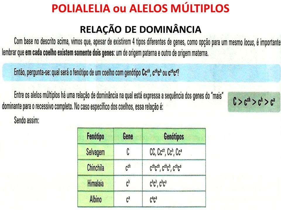 POLIALELIA ou ALELOS MÚLTIPLOS RELAÇÃO DE DOMINÂNCIA