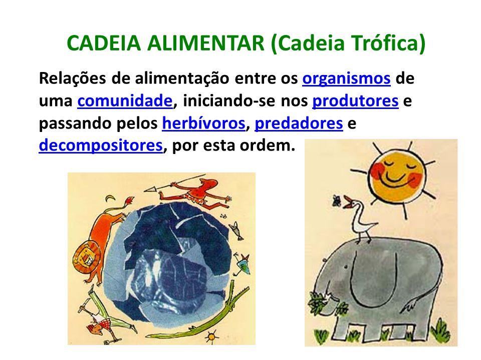 CADEIA ALIMENTAR (Cadeia Trófica) Relações de alimentação entre os organismos de uma comunidade, iniciando-se nos produtores e passando pelos herbívor