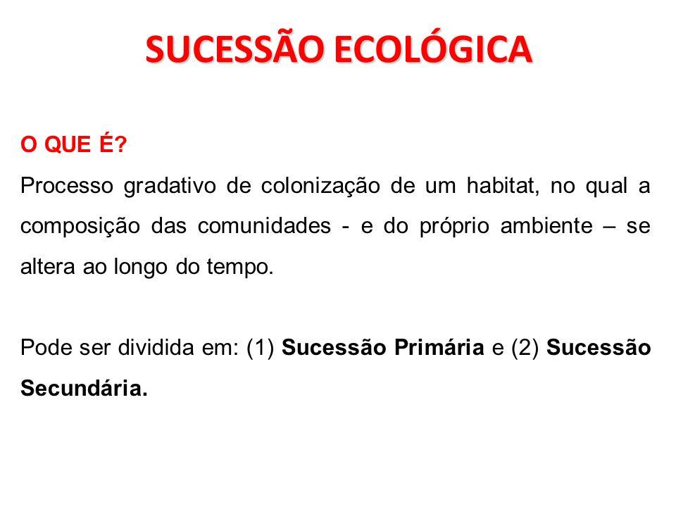 SUCESSÃO ECOLÓGICA O QUE É? Processo gradativo de colonização de um habitat, no qual a composição das comunidades - e do próprio ambiente – se altera