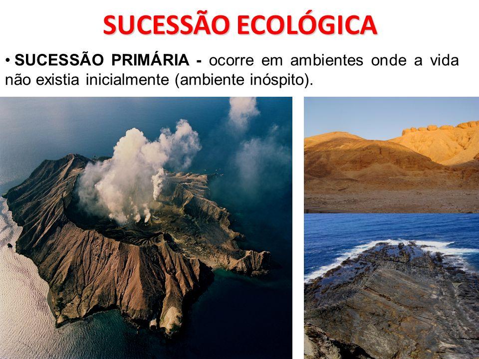 SUCESSÃO ECOLÓGICA SUCESSÃO PRIMÁRIA - ocorre em ambientes onde a vida não existia inicialmente (ambiente inóspito).
