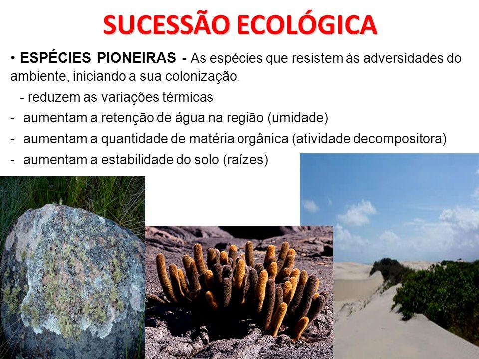 SUCESSÃO ECOLÓGICA ESPÉCIES PIONEIRAS - As espécies que resistem às adversidades do ambiente, iniciando a sua colonização. - reduzem as variações térm