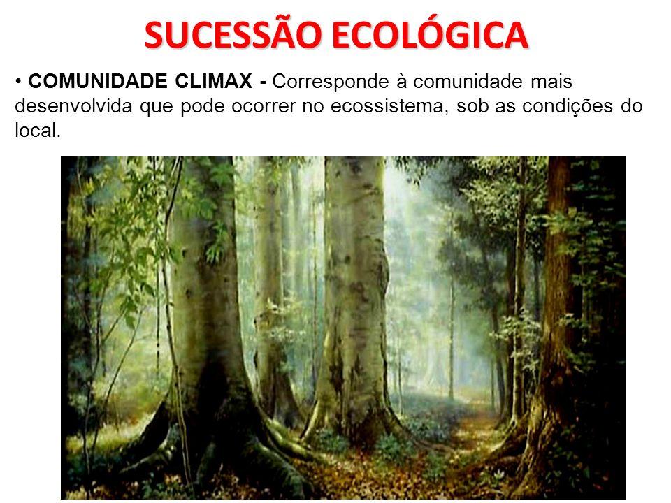 SUCESSÃO ECOLÓGICA SUCESSÃO SECUNDÁRIA- Ocorre em ambientes que já foram previamente habitados.