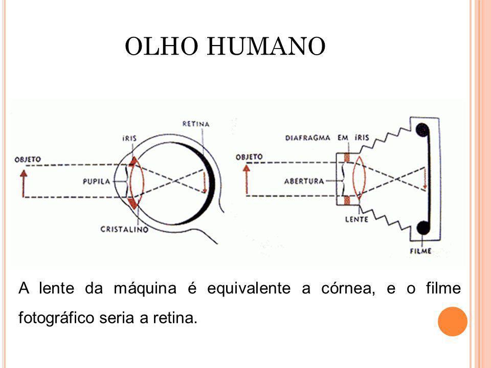 A lente da máquina é equivalente a córnea, e o filme fotográfico seria a retina. OLHO HUMANO