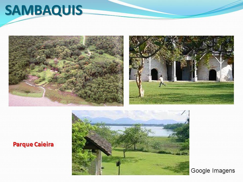 SAMBAQUIS Parque Caieira Google Imagens