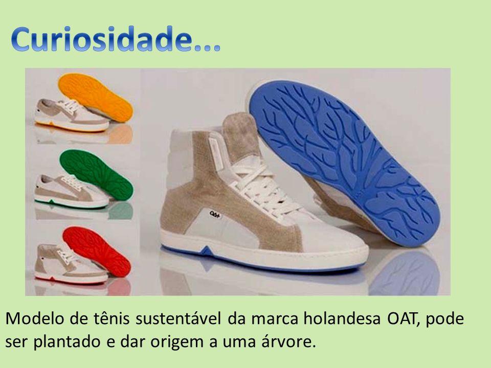 Modelo de tênis sustentável da marca holandesa OAT, pode ser plantado e dar origem a uma árvore.