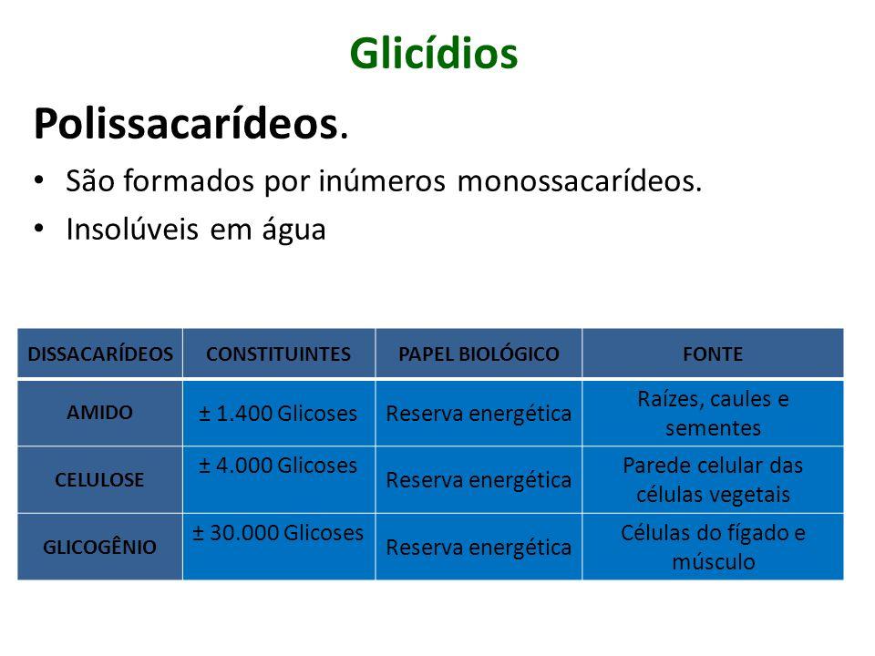 Glicídios Polissacarídeos. São formados por inúmeros monossacarídeos. Insolúveis em água DISSACARÍDEOSCONSTITUINTESPAPEL BIOLÓGICOFONTE AMIDO ± 1.400