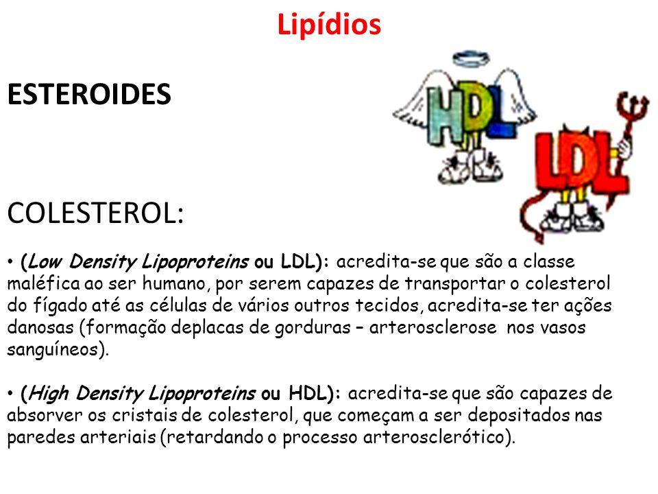 (Low Density Lipoproteins ou LDL): acredita-se que são a classe maléfica ao ser humano, por serem capazes de transportar o colesterol do fígado até as