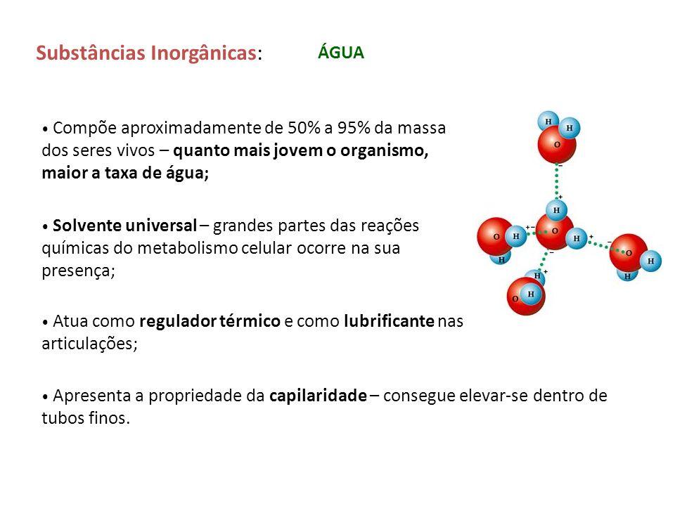 Substâncias Inorgânicas: ÁGUA Compõe aproximadamente de 50% a 95% da massa dos seres vivos – quanto mais jovem o organismo, maior a taxa de água; Solv
