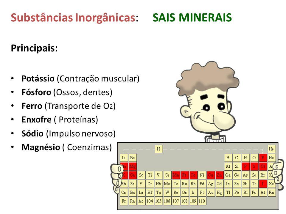 Principais: Potássio (Contração muscular) Fósforo (Ossos, dentes) Ferro (Transporte de O 2 ) Enxofre ( Proteínas) Sódio (Impulso nervoso) Magnésio ( C