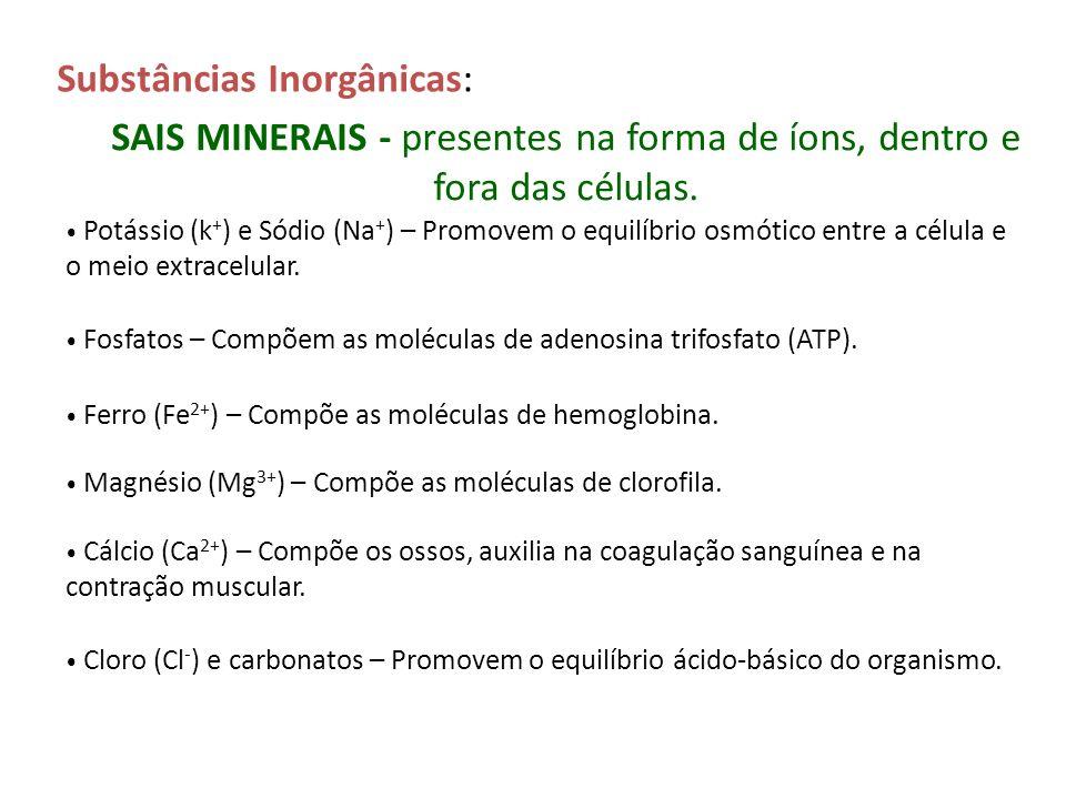 Substâncias Inorgânicas: SAIS MINERAIS - presentes na forma de íons, dentro e fora das células. Potássio (k + ) e Sódio (Na + ) – Promovem o equilíbri