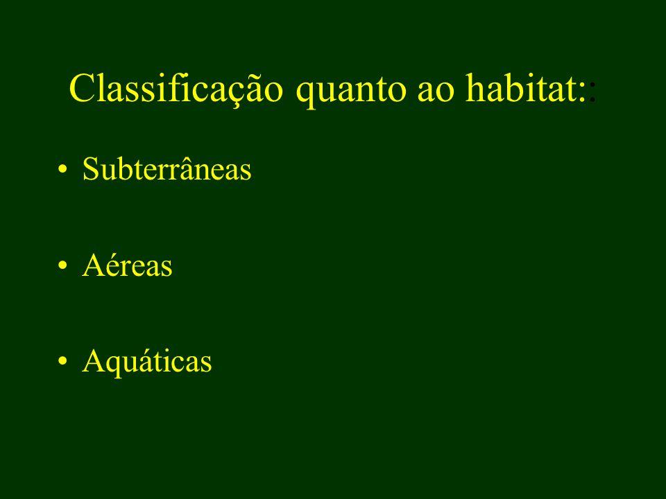Classificação quanto ao habitat:: Subterrâneas Aéreas Aquáticas