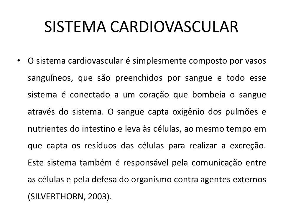 O sistema cardiovascular é simplesmente composto por vasos sanguíneos, que são preenchidos por sangue e todo esse sistema é conectado a um coração que