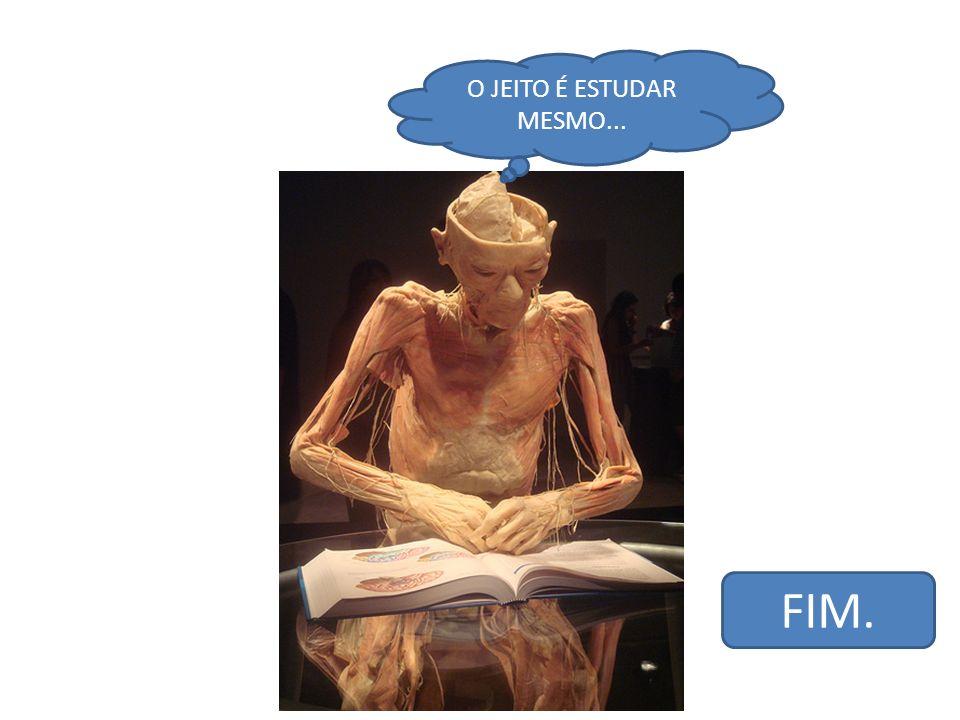 O JEITO É ESTUDAR MESMO... FIM.