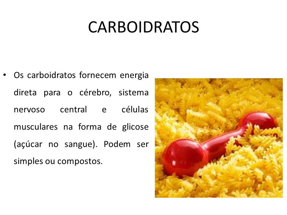 CARBOIDRATOS Os carboidratos fornecem energia direta para o cérebro, sistema nervoso central e células musculares na forma de glicose (açúcar no sangu