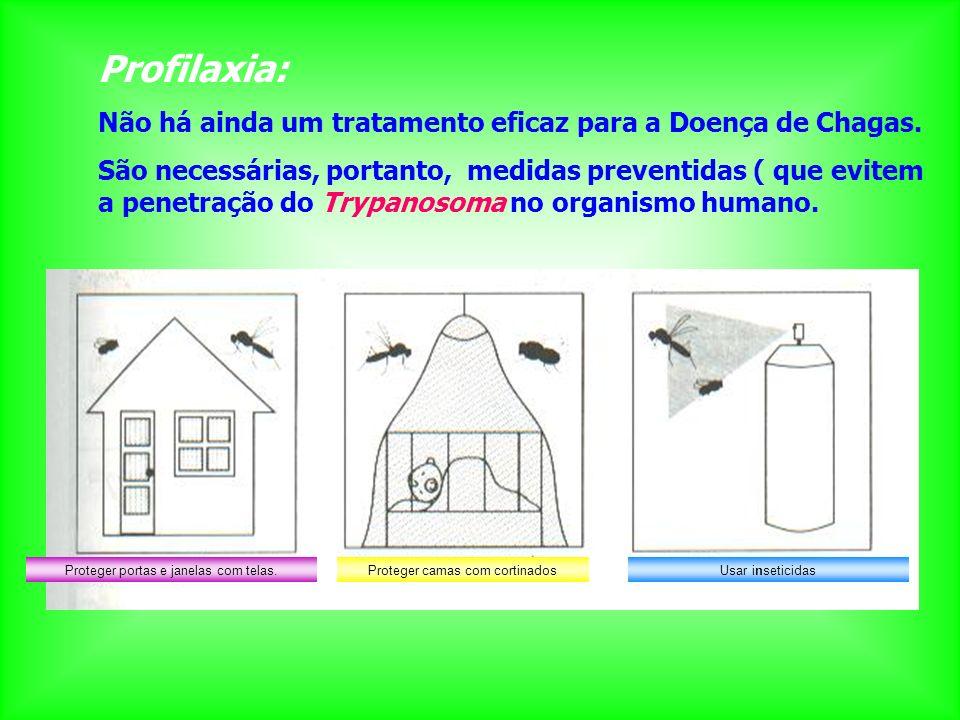 Proteger portas e janelas com telas.Proteger camas com cortinadosUsar inseticidas Profilaxia: Não há ainda um tratamento eficaz para a Doença de Chaga