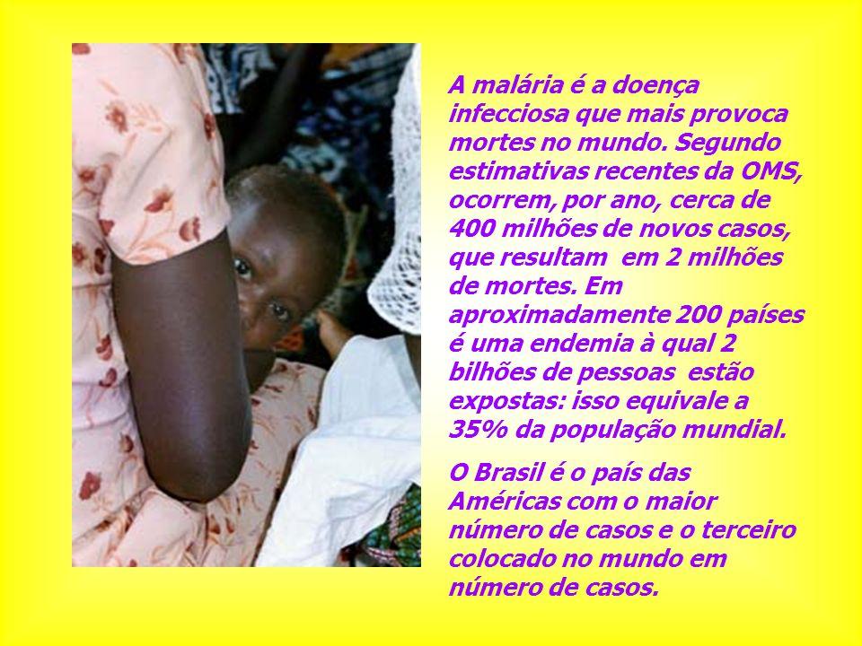 A malária é a doença infecciosa que mais provoca mortes no mundo. Segundo estimativas recentes da OMS, ocorrem, por ano, cerca de 400 milhões de novos