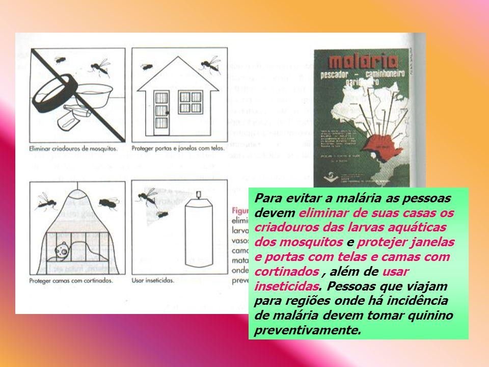 Para evitar a malária as pessoas devem eliminar de suas casas os criadouros das larvas aquáticas dos mosquitos e protejer janelas e portas com telas e