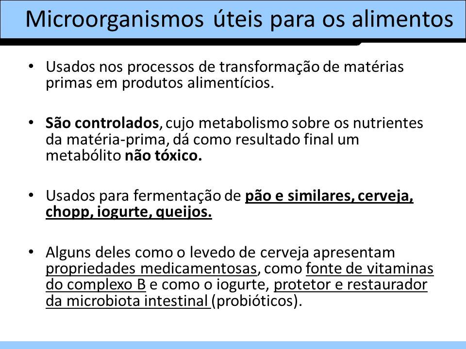 Microorganismos úteis para os alimentos Usados nos processos de transformação de matérias primas em produtos alimentícios. São controlados, cujo metab