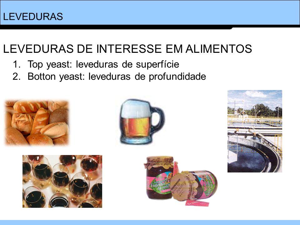 LEVEDURAS 1.Top yeast: leveduras de superfície 2.Botton yeast: leveduras de profundidade LEVEDURAS DE INTERESSE EM ALIMENTOS