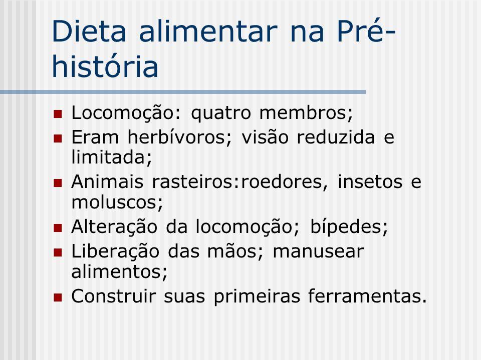 Dieta alimentar na Pré- história Locomoção: quatro membros; Eram herbívoros; visão reduzida e limitada; Animais rasteiros:roedores, insetos e moluscos