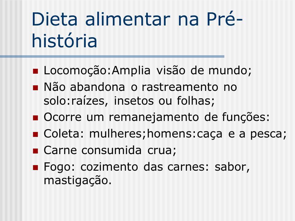 Dieta alimentar na Pré- história Locomoção:Amplia visão de mundo; Não abandona o rastreamento no solo:raízes, insetos ou folhas; Ocorre um remanejamen
