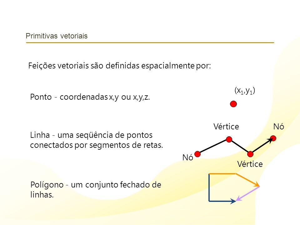 Primitivas vetoriais Ponto - coordenadas x,y ou x,y,z. (x 1,y 1 ) Linha - uma seqüência de pontos conectados por segmentos de retas. Polígono - um con