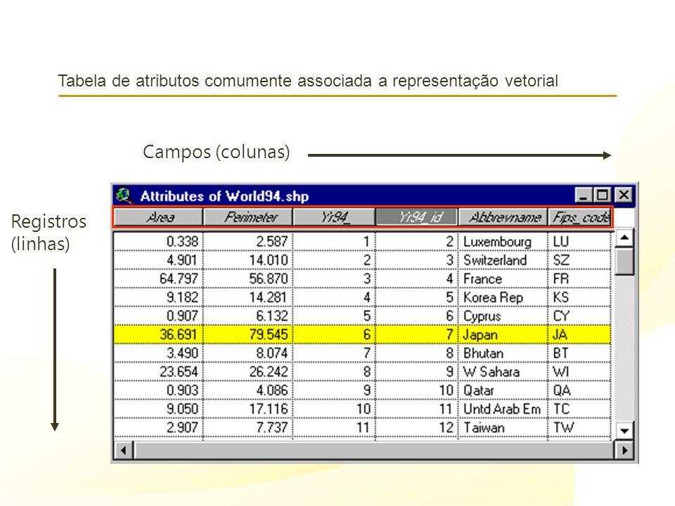 Tabela de atributos comumente associada a representação vetorial Campos (colunas) Registros (linhas)