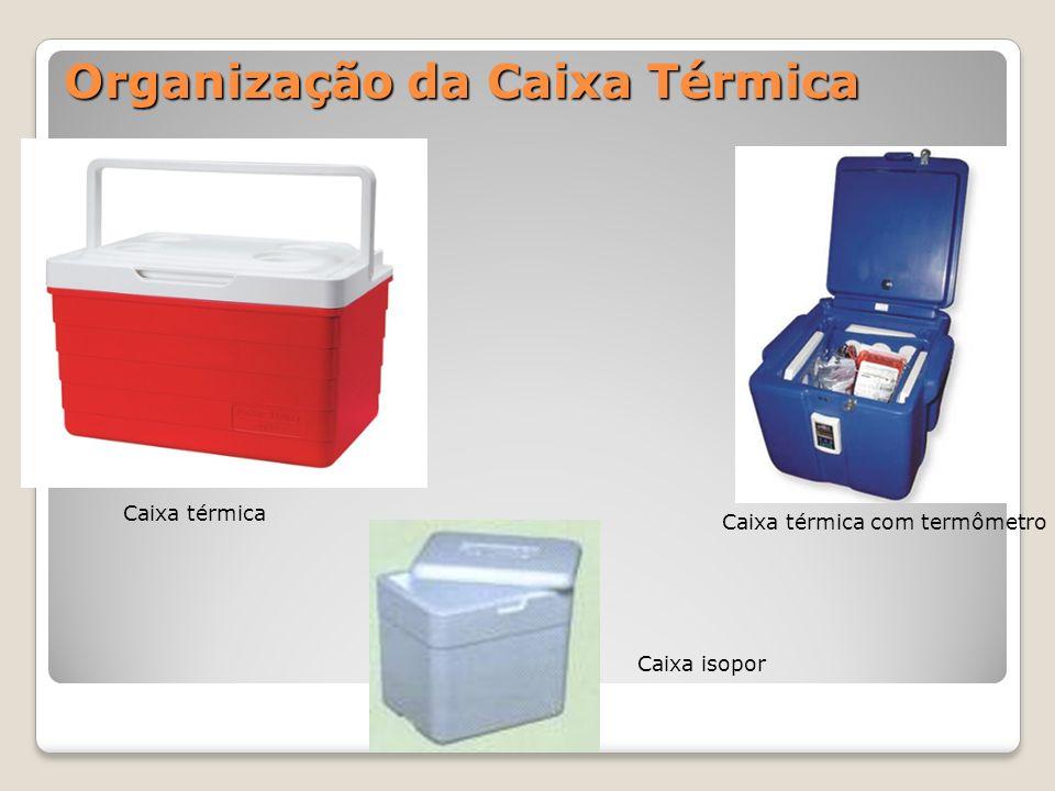 Organização da Caixa Térmica Caixa térmica Caixa térmica com termômetro Caixa isopor