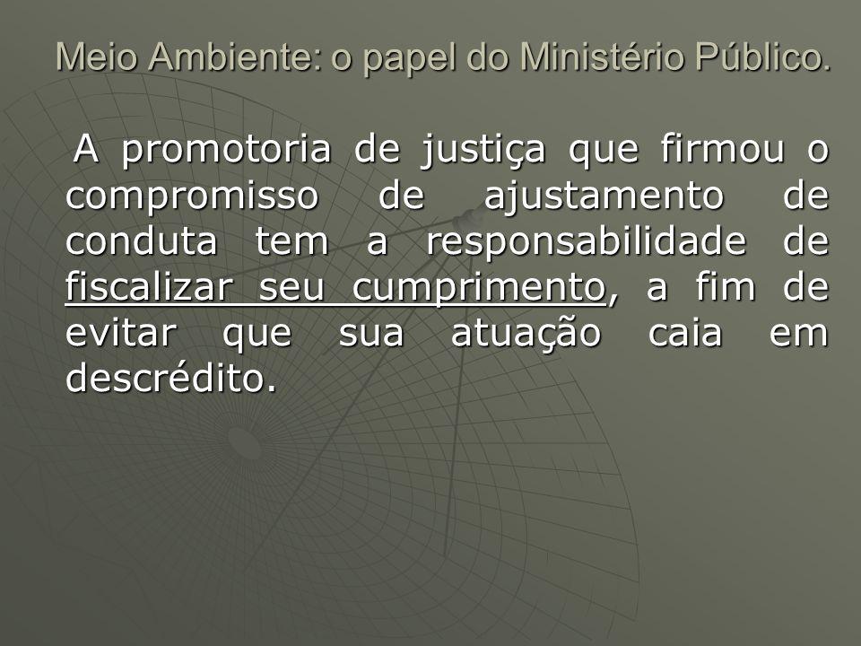 Meio Ambiente: o papel do Ministério Público. A promotoria de justiça que firmou o compromisso de ajustamento de conduta tem a responsabilidade de fis