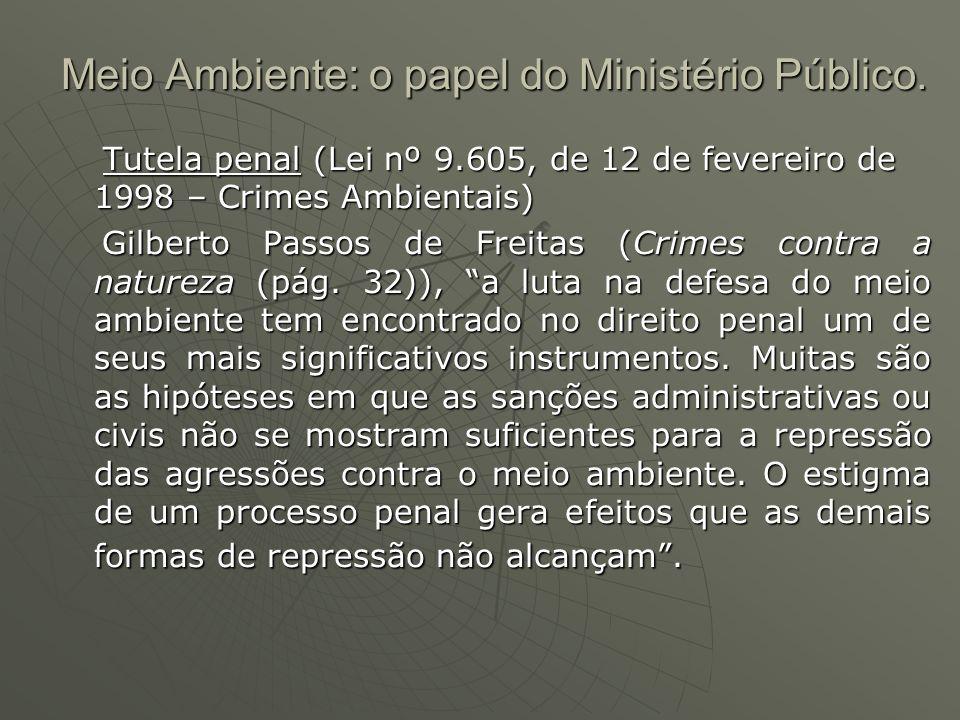 Meio Ambiente: o papel do Ministério Público. Tutela penal (Lei nº 9.605, de 12 de fevereiro de 1998 – Crimes Ambientais) Tutela penal (Lei nº 9.605,