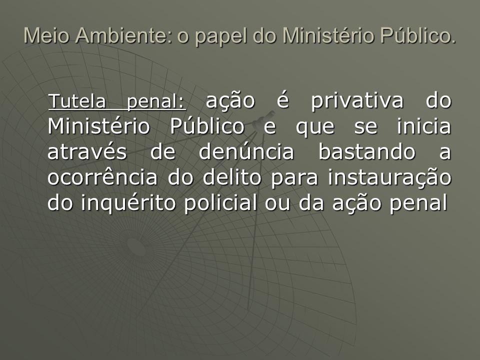 Meio Ambiente: o papel do Ministério Público. Tutela penal: ação é privativa do Ministério Público e que se inicia através de denúncia bastando a ocor