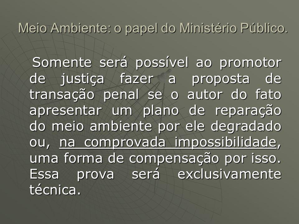 Meio Ambiente: o papel do Ministério Público. Somente será possível ao promotor de justiça fazer a proposta de transação penal se o autor do fato apre