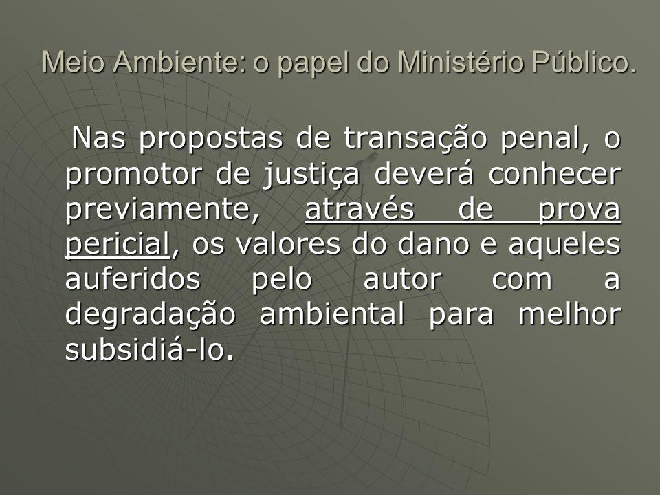 Meio Ambiente: o papel do Ministério Público. Meio Ambiente: o papel do Ministério Público. Nas propostas de transação penal, o promotor de justiça de