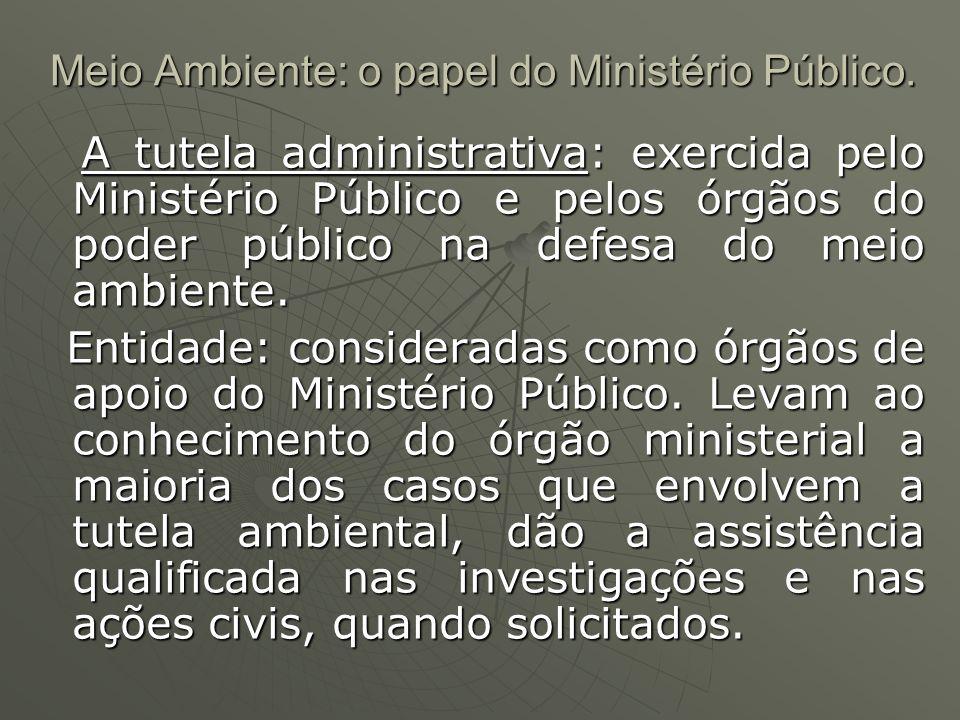 Meio Ambiente: o papel do Ministério Público. A tutela administrativa: exercida pelo Ministério Público e pelos órgãos do poder público na defesa do m