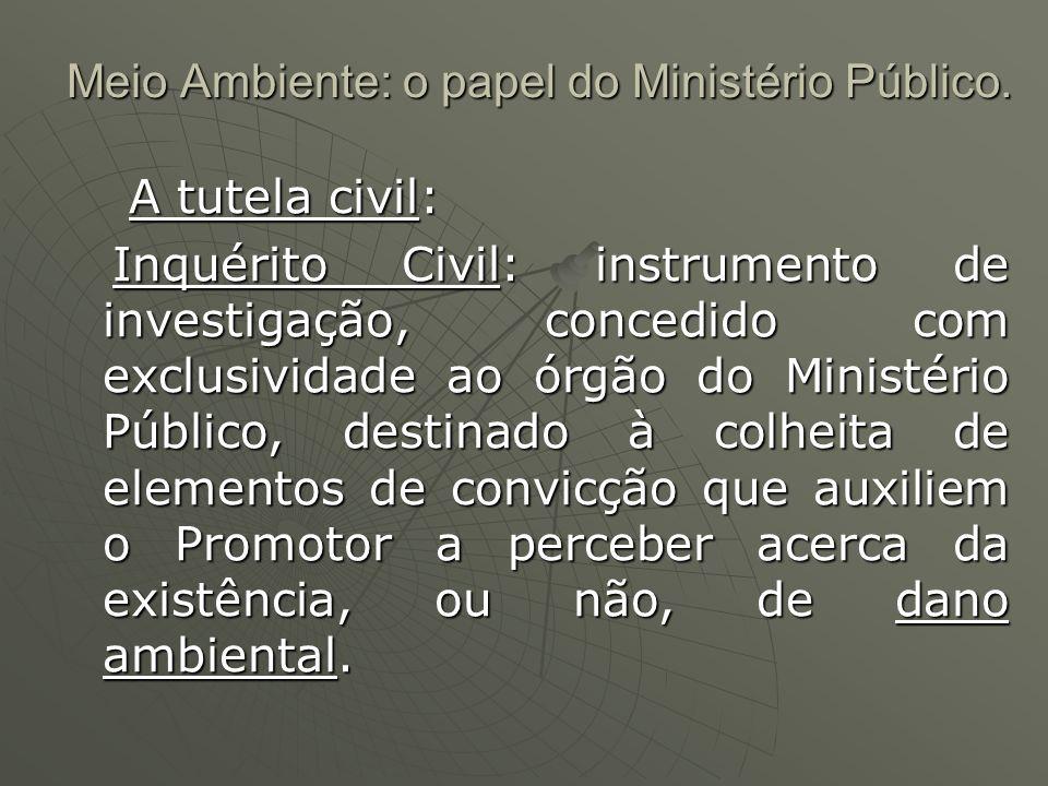 Meio Ambiente: o papel do Ministério Público. A tutela civil: A tutela civil: Inquérito Civil: instrumento de investigação, concedido com exclusividad