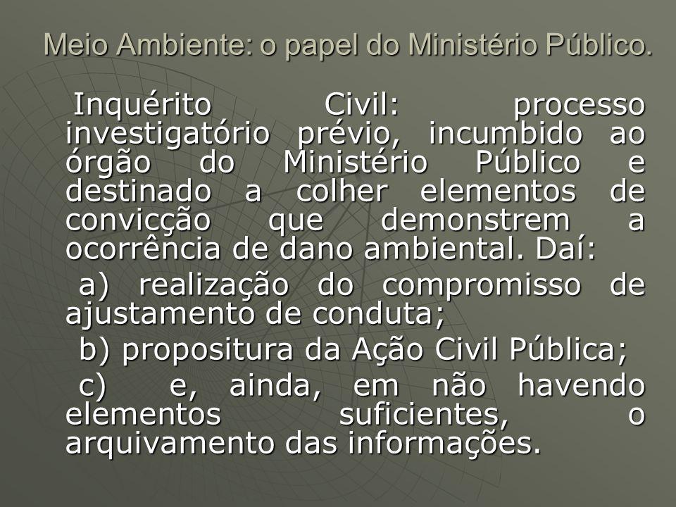 Meio Ambiente: o papel do Ministério Público. Inquérito Civil: processo investigatório prévio, incumbido ao órgão do Ministério Público e destinado a