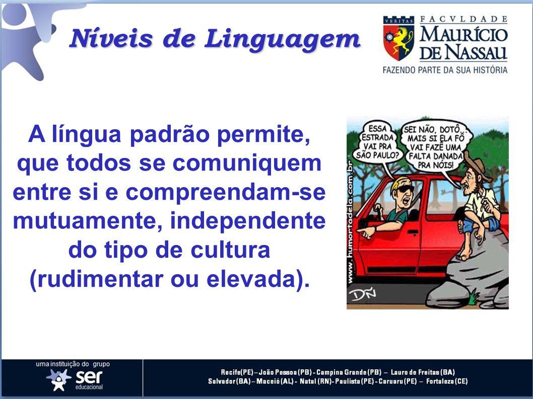Níveis de Linguagem A língua padrão permite, que todos se comuniquem entre si e compreendam-se mutuamente, independente do tipo de cultura (rudimentar