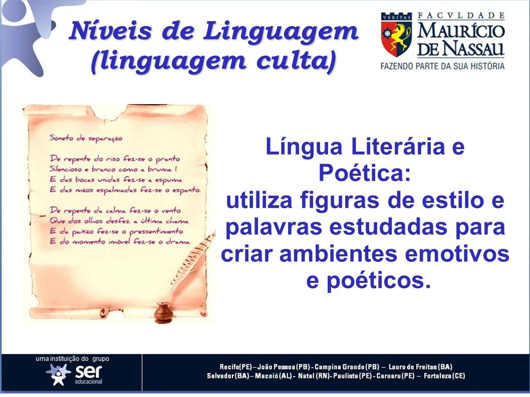 (linguagem culta) Língua Literária e Poética: utiliza figuras de estilo e palavras estudadas para criar ambientes emotivos e poéticos.