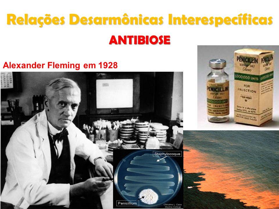 ANTIBIOSE Alexander Fleming em 1928