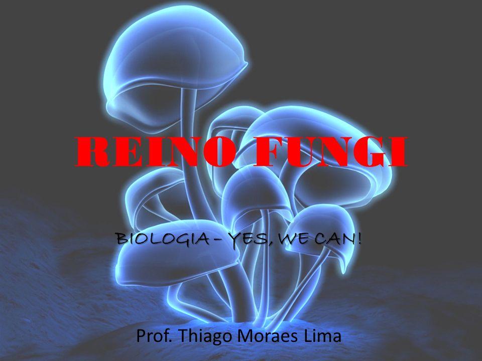REINO FUNGI BIOLOGIA – YES, WE CAN! Prof. Thiago Moraes Lima