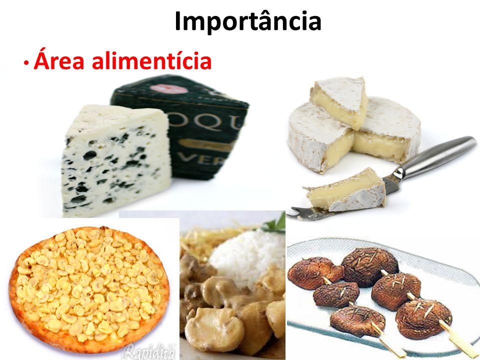 Importância Área alimentícia
