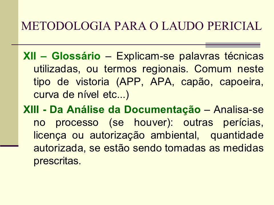 METODOLOGIA PARA O LAUDO PERICIAL XII – Glossário – Explicam-se palavras técnicas utilizadas, ou termos regionais. Comum neste tipo de vistoria (APP,