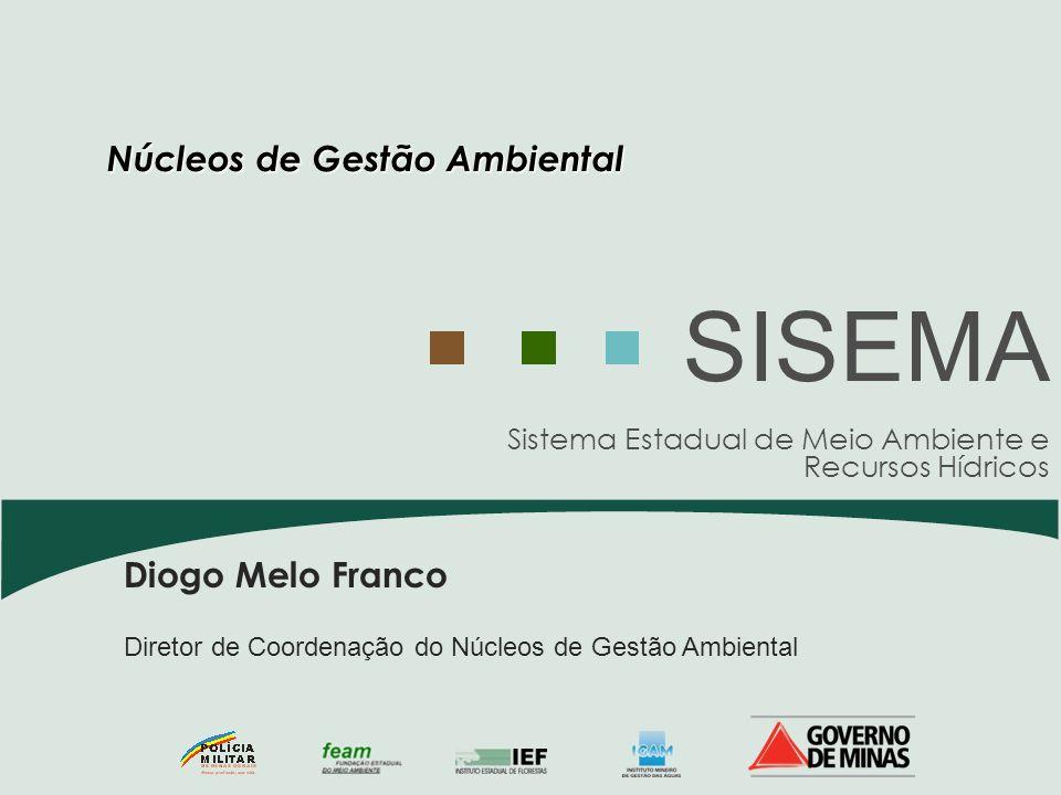 Sistema Estadual de Meio Ambiente e Recursos Hídricos SISEMA Diogo Melo Franco Diretor de Coordenação do Núcleos de Gestão Ambiental Núcleos de Gestão
