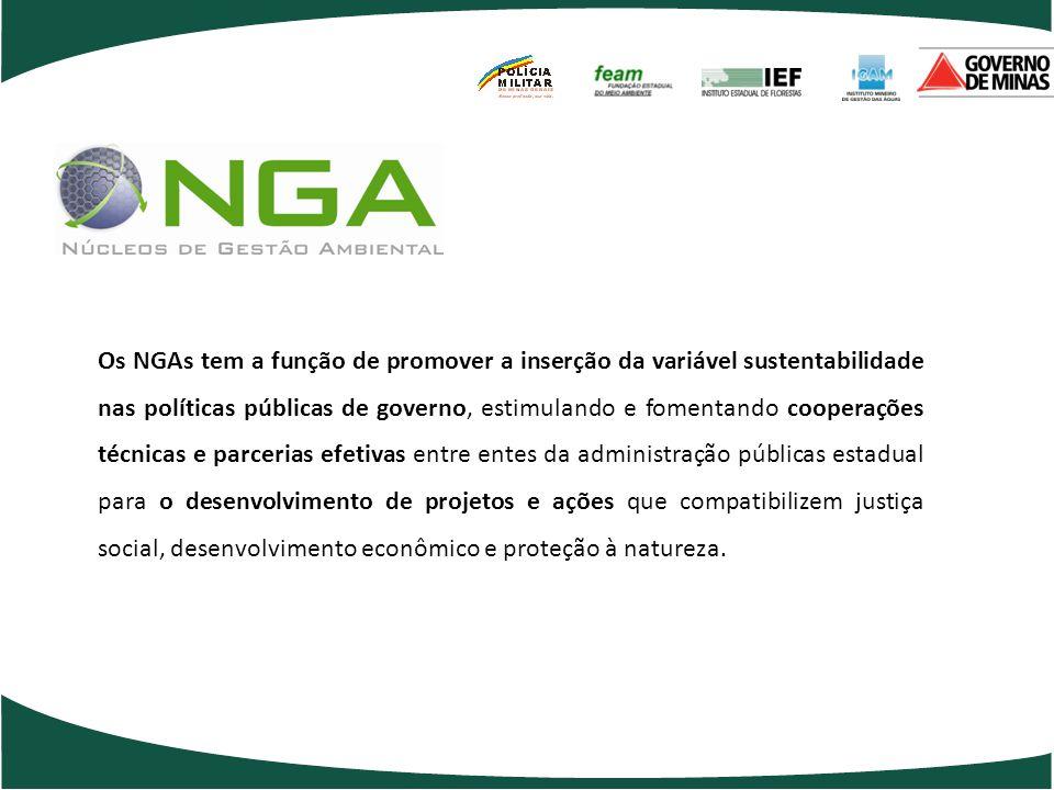 Os NGAs tem a função de promover a inserção da variável sustentabilidade nas políticas públicas de governo, estimulando e fomentando cooperações técni